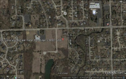 Photo of 11411 German Church (lot 5) Road, WILLOW SPRINGS, IL 60525 (MLS # 10297888)