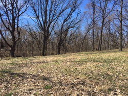 Photo of 23 / 25 Clearwater, PUTNAM, IL 61560 (MLS # 10335807)