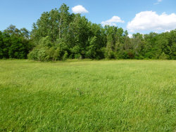 Photo of Lot E Fullerton Avenue, ADDISON, IL 60101 (MLS # 10344609)
