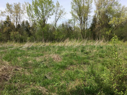 Photo of Lot 4 Mundhank Road, SOUTH BARRINGTON, IL 60010 (MLS # 10345907)