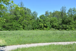 Photo of 00 Wooded Cove Drive, ELWOOD, IL 60421 (MLS # 10348553)