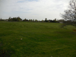Photo of Lot 20 Brown Road, ST. CHARLES, IL 60175 (MLS # 10375595)