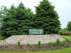 Photo of Lot 6 Blackberry Crossing Circle, ELBURN, IL 60119 (MLS # 10390660)