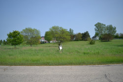 Photo of Lot 33 Hillview Lane, HAMPSHIRE, IL 60140 (MLS # 10399751)