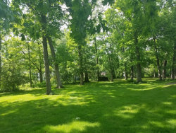 Photo of 116 Homestead, Lot, WOOD DALE, IL 60191 (MLS # 10415017)