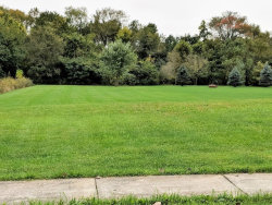 Photo of 21151 S Wooded Cove Drive, ELWOOD, IL 60421 (MLS # 10422398)