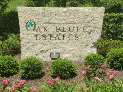 Photo of LOT 17 Oak Bluff Lane, WOODRIDGE, IL 60517 (MLS # 10422440)