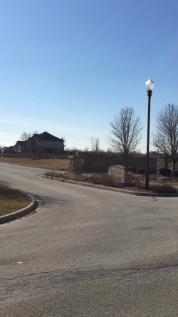 Photo of 26851 S Wildgrass Turn, MONEE, IL 60449 (MLS # 10477497)