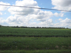 Photo of Parcel A Peotone Road, WILMINGTON, IL 60481 (MLS # 10486178)