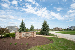 Photo of Lot 16 Savanna Court, Yorkville, IL 60560 (MLS # 10524069)