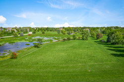 Photo of 5N833 E Sunset Views Drive, St. Charles, IL 60175 (MLS # 10528603)