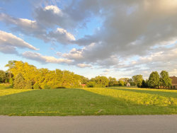 Photo of Lot 30 Carriage Way Lane, Huntley, IL 60142 (MLS # 10539357)