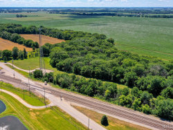 Photo of Lot 2 E Grand Ridge Road, Mazon, IL 60444 (MLS # 10586656)