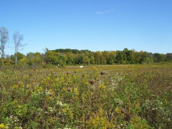 Photo of LOT 5 Deer Pond Court, St. Charles, IL 60175 (MLS # 10601403)