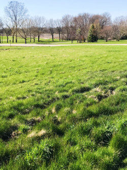 Photo of Lot 100 Lot 100 Drive, Yorkville, IL 60560 (MLS # 10703233)