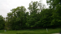 Photo of lot 24 Eagle Chase Drive, Seneca, IL 61360 (MLS # 10727655)