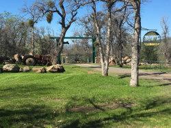 Photo of 13951 Murphy Ln, Oak Run, CA 96069 (MLS # 16-1451)