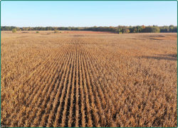 Photo of 0 Co Rd W66, Columbus Junction, IA 52738 (MLS # 5574714)