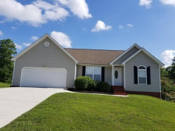 Photo of 320 Stanford Dr, Flintstone, GA 30725 (MLS # 1265711)