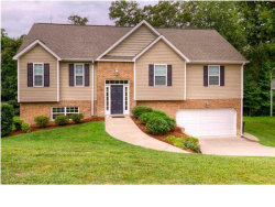 Photo of 216 Hidden Oaks Dr, Flintstone, GA 30725 (MLS # 1267771)