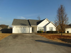 Photo of 63 Holli Ln, Rossville, GA 30741 (MLS # 1273851)