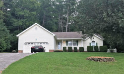 Photo of 411 Middle View Dr, Ringgold, GA 30736 (MLS # 1286826)