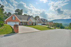 Photo of 124 Stanford Dr, Flintstone, GA 30725 (MLS # 1286992)