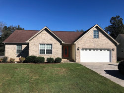 Photo of 312 Creeks Jewell Dr, Ringgold, GA 30736 (MLS # 1289380)