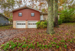 Photo of 209 Cinderella Dr, Flintstone, GA 30725 (MLS # 1290861)