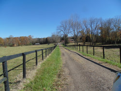 Photo of 8163 Highway 193, Flintstone, GA 30725 (MLS # 1291174)
