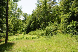 Photo of 2170 N Cedar, Flintstone, GA 30725 (MLS # 1249902)
