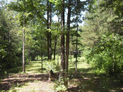 Photo of 950 E Teems Rd Lot 2, Ringgold, GA 30736 (MLS # 1271123)
