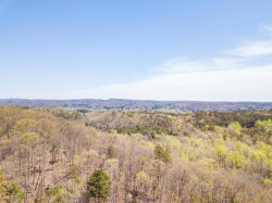 Photo of 0 Powder Springs Cir, Flintstone, GA 30725 (MLS # 1279574)