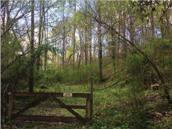 Photo of 4087 Happy Valley Rd, Flintstone, GA 30725 (MLS # 1283359)