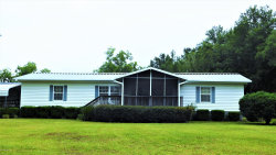 Photo of 4144 Bronco RD, MIDDLEBURG, FL 32068 (MLS # 1000604)