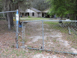 Photo of 18 Mint CIR, MIDDLEBURG, FL 32068 (MLS # 1001292)