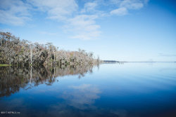 Photo of 6591 Seldom Rest RD, GREEN COVE SPRINGS, FL 32043 (MLS # 862148)
