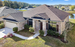 Photo of 10832 Linwood Hills DR, JACKSONVILLE, FL 32222 (MLS # 925410)