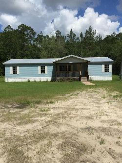 Photo of 2302 Huckleberry CT, MIDDLEBURG, FL 32068 (MLS # 942581)