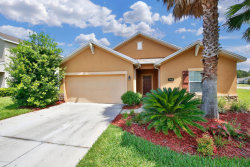 Photo of 4430 Song Sparrow DR, MIDDLEBURG, FL 32068 (MLS # 947962)