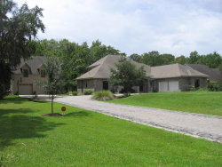 Photo of 161 Williams Park RD, GREEN COVE SPRINGS, FL 32043 (MLS # 948550)