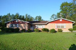 Photo of 3963 Bronco RD, MIDDLEBURG, FL 32068 (MLS # 950898)