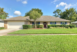 Photo of 14339 Crystal Cove DR S, JACKSONVILLE, FL 32224 (MLS # 958414)