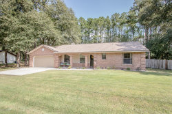 Photo of 1567 Jacqueline LN, MIDDLEBURG, FL 32068 (MLS # 958489)