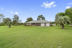 Photo of 3898 Ron RD, GREEN COVE SPRINGS, FL 32043 (MLS # 961834)