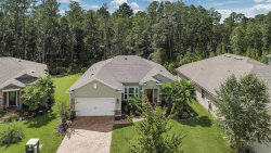 Photo of 282 Gray Wolf TRL, JACKSONVILLE, FL 32081 (MLS # 962668)