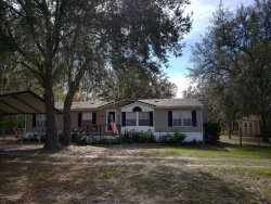 Photo of 4531 Cottontail CT, MIDDLEBURG, FL 32068 (MLS # 969234)