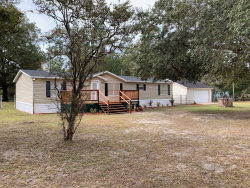 Photo of 5050 Spearmint ST, MIDDLEBURG, FL 32068 (MLS # 970083)