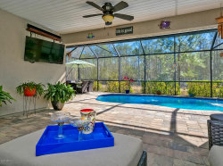 Photo of 220 Ellsworth CIR, ST JOHNS, FL 32259 (MLS # 979033)