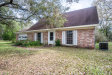 Photo of 3019 County Road 220, MIDDLEBURG, FL 32068 (MLS # 982154)